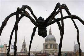 giant spider in Bolivia