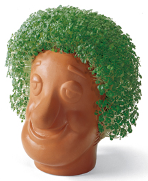 http://www.jweekly.com/article/full/62011/seed-money-chia-pet-marketing-genius-shares-good-fortune-with-hillel-charit/