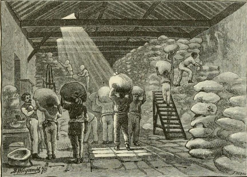 The Haunted Enghenio A coffee warehouse in Brazil, 1879