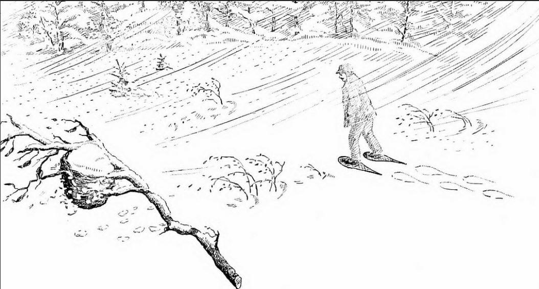 snowstorm 1910