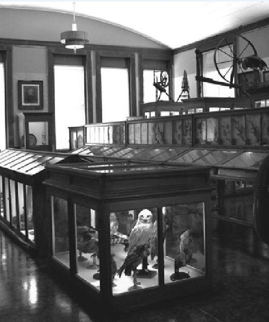 mansfield memorial museum cases