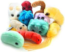 stuffed diseases
