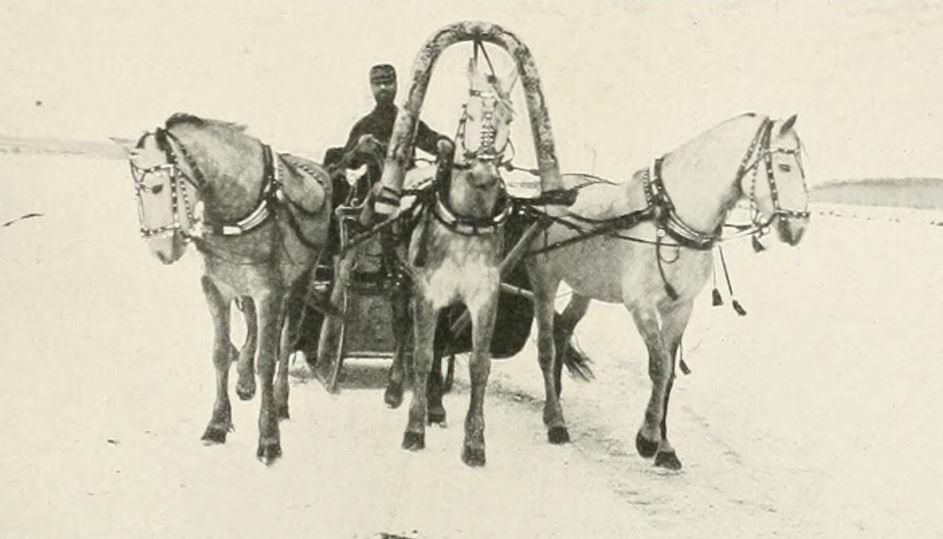 Where's Wanka? A troika with three grey horses.